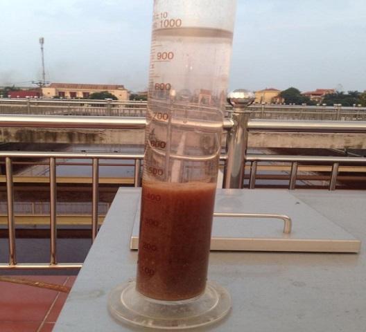 Bùn vi sinh trong hệ thống xử lý nước thải
