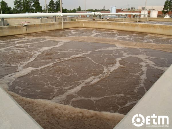 Ứng dụng bùn hoạt tính trong xử lý nước thải chế biến thủy sản